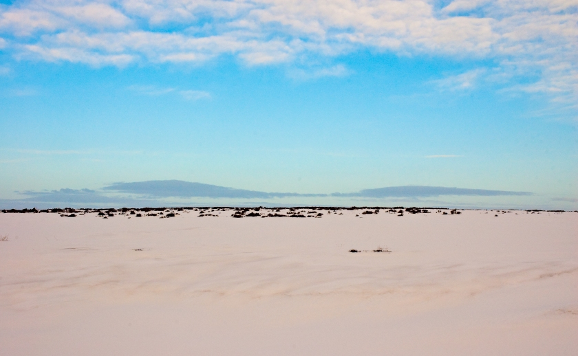 Snow desert by Thomas Tolkien, Creative Commons / flickr